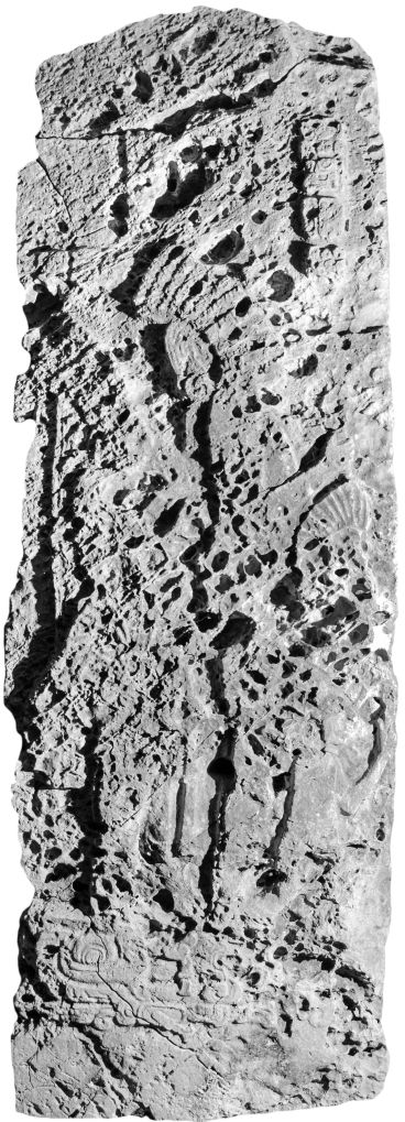 El Chal, Stela 4, front photo