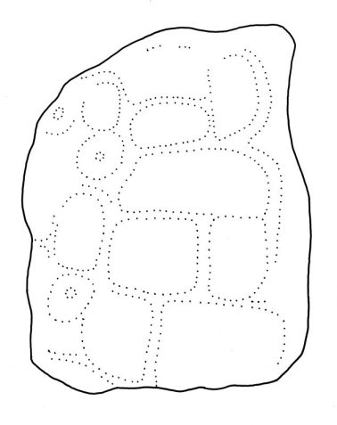 Ixkun, Espiga, drawing