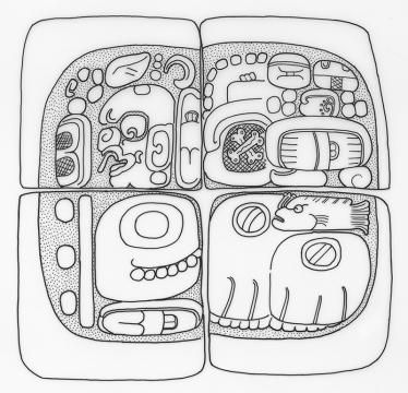 Machaquila, drawing