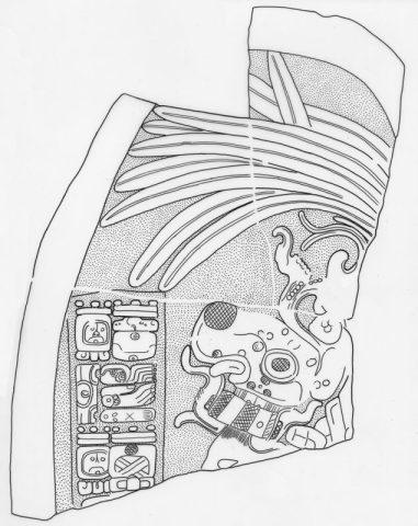 Machaquila, Stela 6, drawing