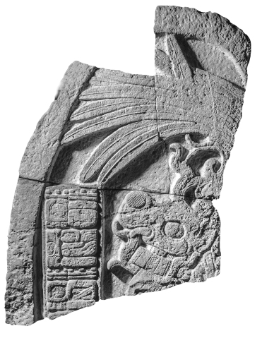 Machaquila, Stela 6, photo